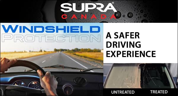 windsheild-protection